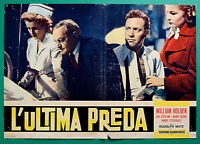 T15 Fotobusta L'Ultima Beute William Holden Jan Sterling Nancy Olson Mate '