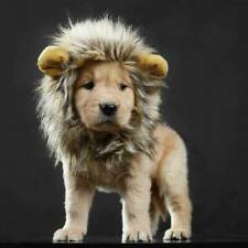 Pet Dog Hat Costume Lion Mane Wig For Cat Halloween Cosplay Dress Up With Ears~