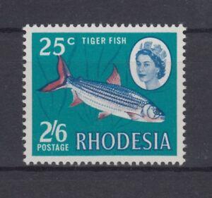 D. Rhodesien  78  Fische  **  (mnh)