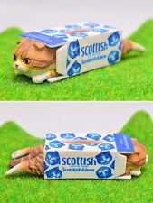 Kitan Club Capsule Scottish Fold neko Cat tissues mini model Cha tora Shiro
