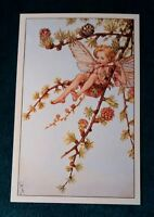 CICELY MARY BARKER FLOWER FAIRIES POSTCARD, THE LARCH FAIRY, OF THE SPRING