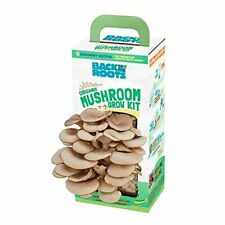 Back to the Roots Organic Mushroom Growing Kit, Harvest Gourmet Oyster Mushrooms