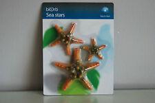aquarium en couleur étoile de mer Orbe décoration jaune Pack 3 tout type