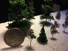 """60 Z  Pines  1"""", 1.5,"""" & 2"""" by Architrees"""
