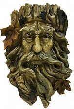 Rustic Old Tree Face Hanging Plant Box Sculpture Pot Enchanted Forest Whimsical