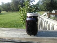 HOMEMADE MICHIGAN BLUEBERRY JAM  PINT