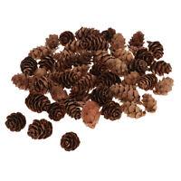 Natural Pine Cones 60Pcs Quality Pinecone's Florists Crafts Decorative Cone