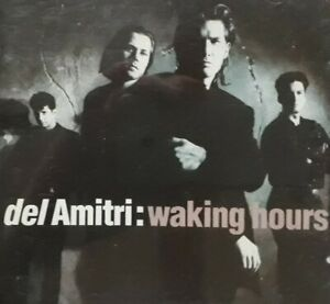 Del Amitri-Waking Hours CD.1998 A&M CDA 9006.Nothing Ever Happens/You're Gone+