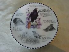 Wedgwood Collectors Plate The Birdwatcher's notebook  The Blackbird