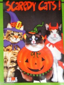 SCAREDY CATS! Small Halloween Flag by Animal Planet Felines in Costumes! New