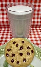Faux Fake Food Replica MILK & COOKIE Snack Display Home Stage Movie PROP FFB33