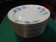 "Beautiful RARE Vintage ROSENTHAL Selb Germany U.S.Zone ""Helena"" 14 DINNER Plates"
