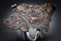 Meteorite Terny Crater Breccia Ukraine Museum quality