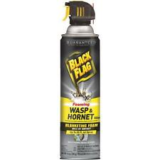 Black Flag Foaming Wasp & Hornet Pest Killer Spray 20 ft Kills Bee Hive & Nest