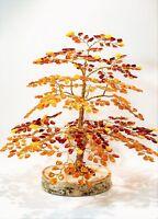 Amber Money Frog  Bonsai Baltic  Amber Stone Buddha 10PCS