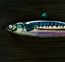 Caballa: original pintura al óleo sobre lienzo de papel: peces arte por David Andrews
