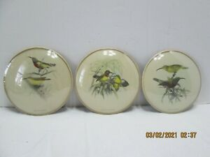 "Set of 3 6"" Round Vintage Bird Pictures Cinnyris Solaris, Superbus, & Pectoralis"