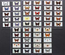 Wills British Butterflies 1927  - clean complete set in sleeves