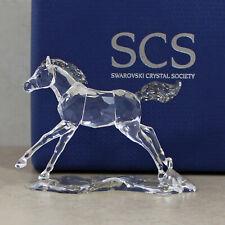 Swarovski 5004728_2, 2014 SCS Annual Edition Esperanza Foal