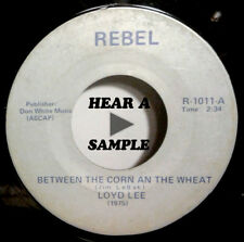 Loyd Lee  Between The Corn and The Wheat  REBEL rare country 45   mp3