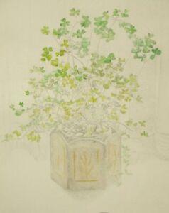 Slade artist Gillian Whaite original floral still life etching 1970's