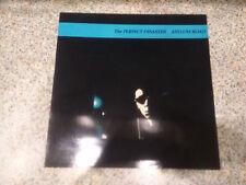 Perfect Disaster - Asylum Road, Vinyl, Near Mint
