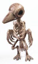 Dead Crow Skeleton Raven Bones Bird Ornament Halloween Prop Horror Haunted House