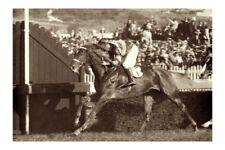 PETER PAN winning 1933 AJC ST LEGER Randwick modern Digital Photo Postcard