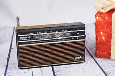 GRAETZ Pagino 302 Netzautomatic Kofferradio Portable Radio funktionstüchtig