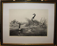 Canada Goose Signed Litho by Al Bross Listed New Jersey