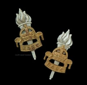 Pair of Royal Army Educational Corps Collar Badges