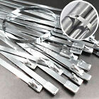 100Pcs 4.6*200mm Stainless Steel Exhaust Wrap Coated Locking Cable Zip Ties Bulk