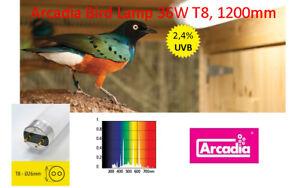 Arcadia Bird Lamp-Vogellampe 36W T8 1200mm Leuchtstoffröhre Vögel UVB 2.4% FB36