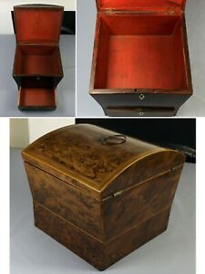IMPRESSIVE George III dark burr yew wood work box domed top and drawer to base