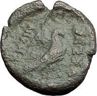 THESSALONICA in MACEDONIA 187BC Zeus Eagle Authentic Ancient Greek Coin i60840