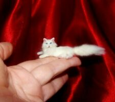 WHITE MAINCOON CAT Dollhouse realistic OOAK miniature 1:12 handmade IGMA handsc