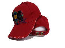 Native American Native Pride Symbol Shadow Indian Red Ball Cap Hat (RAM)