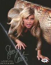 Stacy Carter Miss Kitty The Kat Signed 8x10 Photo PSA/DNA COA Autograph WWE Diva