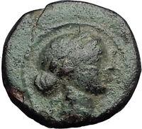 SARDES in LYDIA 133BC Apollo Club Wreath Authentic Ancient Greek Coin i60525