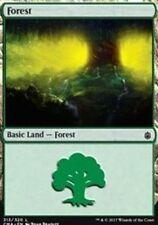 Forest (313)    NM  x4  Commander Anthology Basic Land  MTG