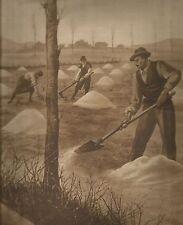 K0379 Contadini spandono la calce nel terreno - Stampa antica