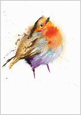 HELEN APRIL ROSE Limited Print  CUTE ROBIN bird art watercolour 296