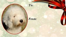 Old English Sheepdog Self Adhesive Gift Labels by Starprint