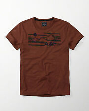 Abercrombie & Fitch Mens Logo Graphic T shirts Rust Small