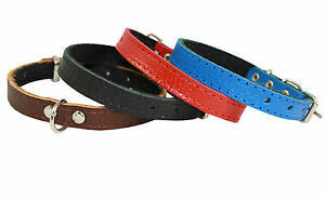 """Genuine Leather Dog Cat Collar Padded 8""""-10"""" neck Yorky, Puppies, XSmall Dogs"""