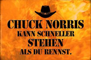 Chuck Norris Spruch 28 Blechschild Schild gewölbt Metal Tin Sign 20 x 30 cm