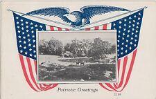 PATRIOTIC U.S.A. Postcard 1920 Carthage Maine FLAGS Eagle Greetings 155