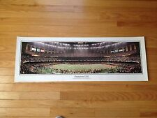 Super Bowl XXXI Panorama Print Poster - Packers vs. Patriots (PRINT ONLY)