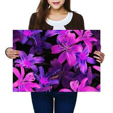 A2 | Purple Lily Flowers Plant Floral Size A2 Poster Print Photo Art Gift #13140