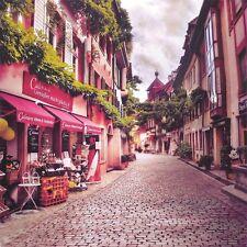 Paris Street View Photography Backgrounds 10x10ft Vinyl Photo Backdrops